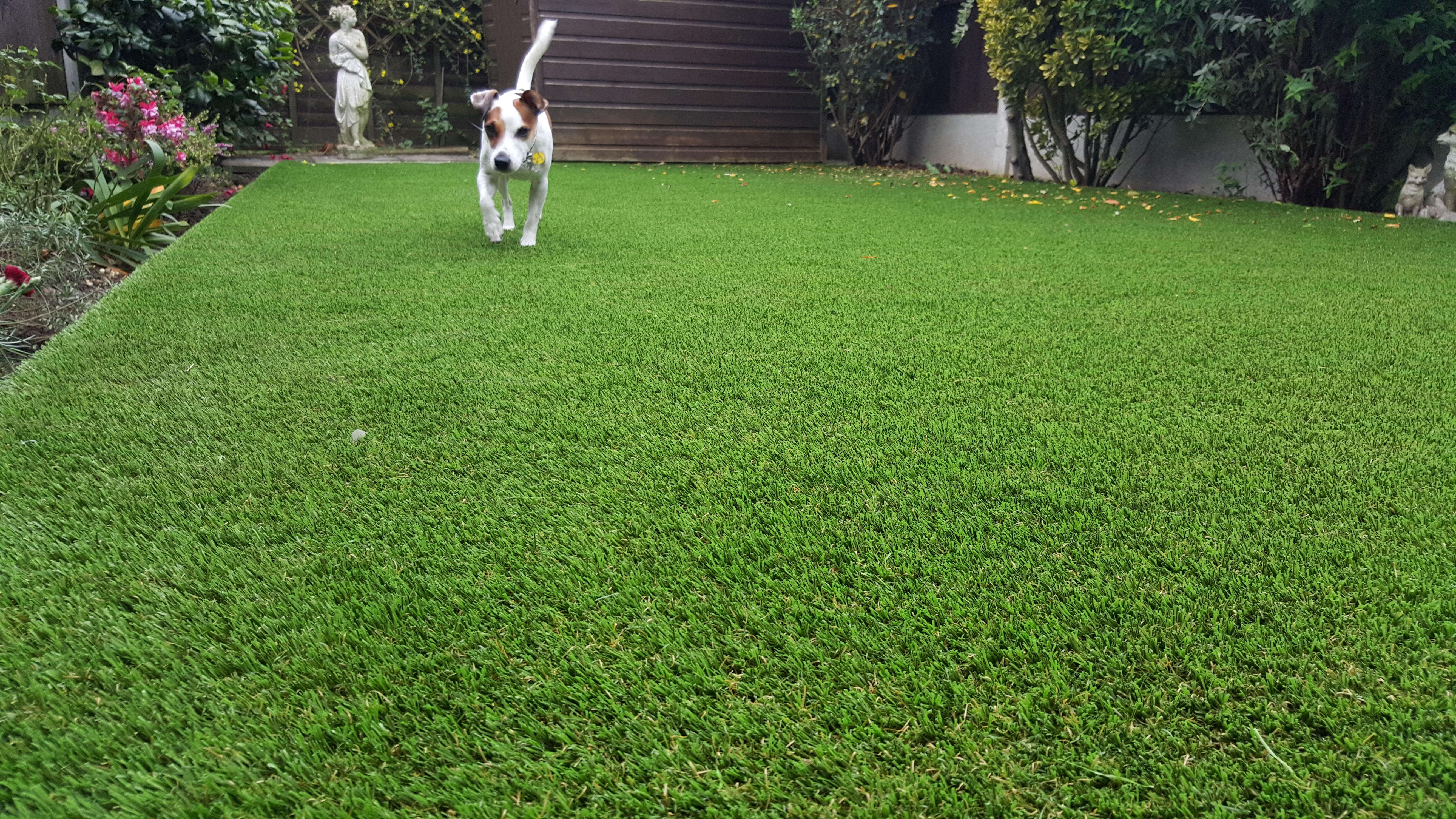 imitation grass suppliers for dogs