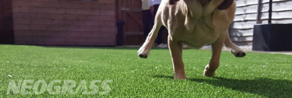 6 Ideal Applications for Nylon Artificial Grass