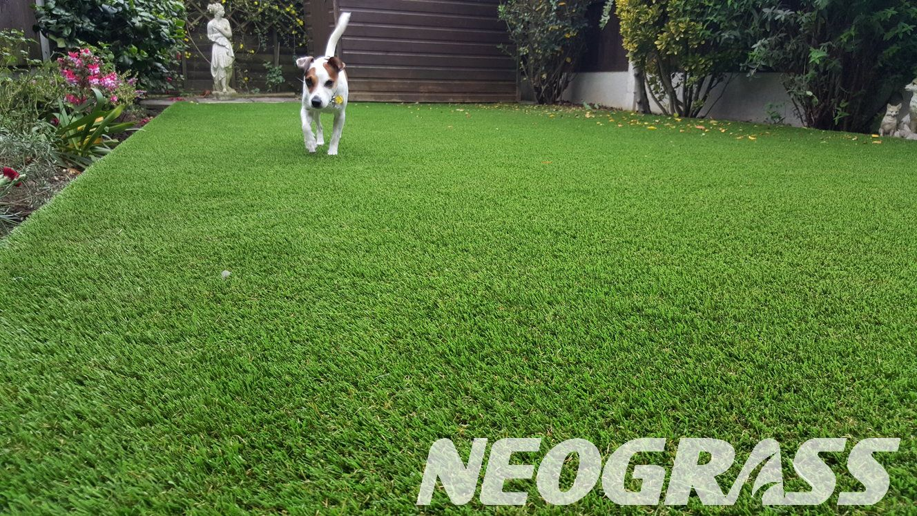 Is Artificial Grass Good For Dogs