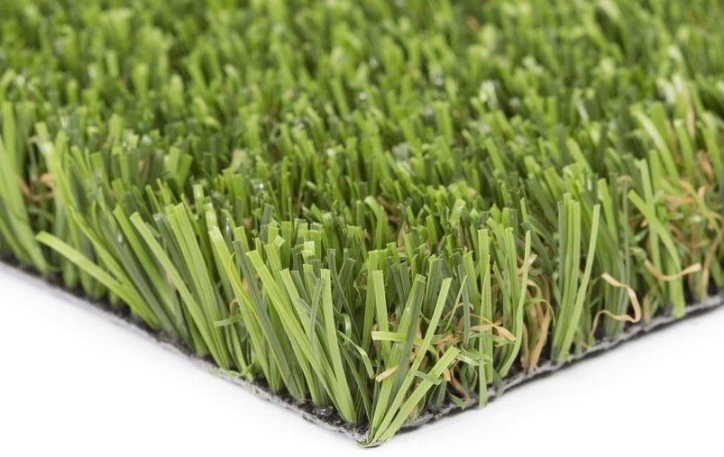 New Product Focus: Tempo by NeoGrass