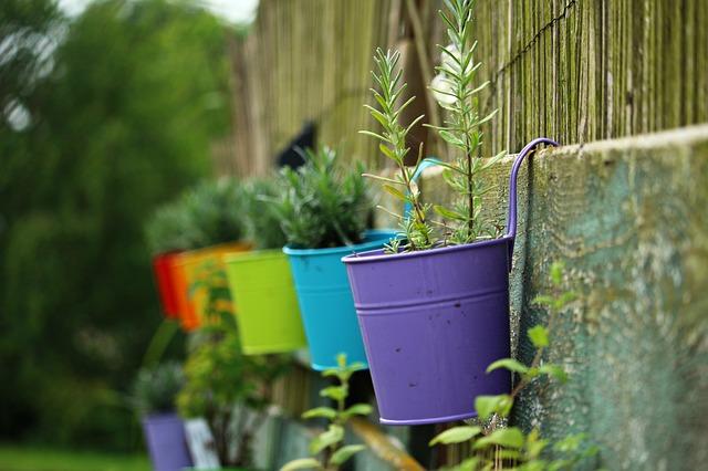 8 Ways to Create a Low-Maintenance Garden