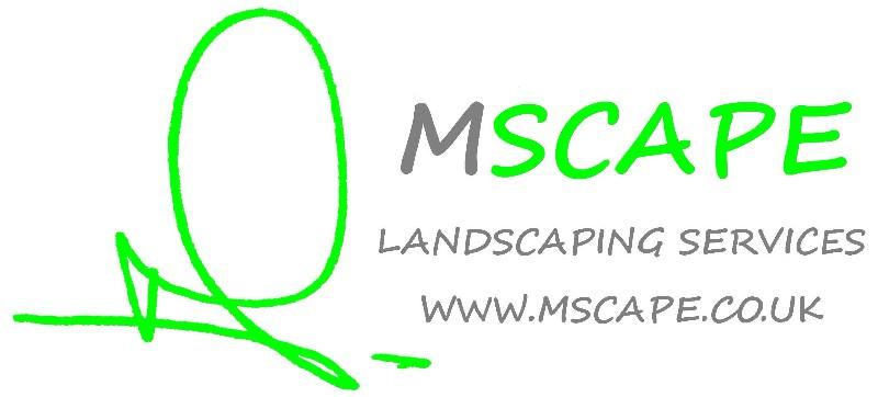 MSCAPE