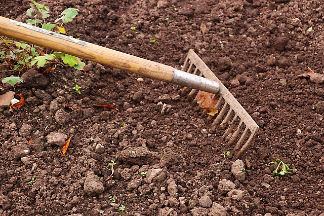 How to Prevent Weeds in the Garden