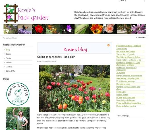 rosies blog