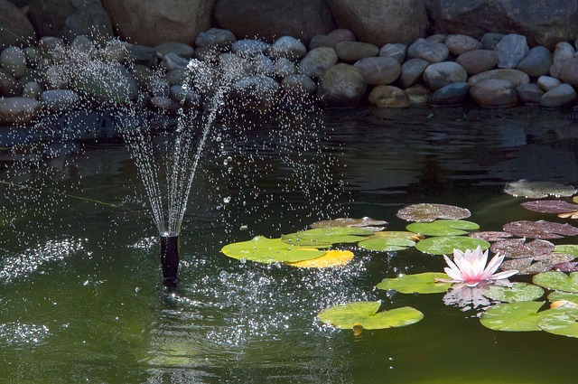 garden pond fountain