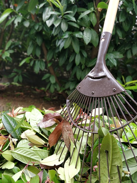 12 Essential Gardening Tools