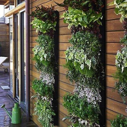 small garden living wall