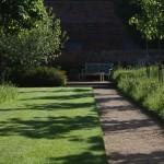 Wildflower Turf around lawn