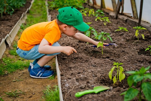 How to Make Your Garden More Child-Friendly