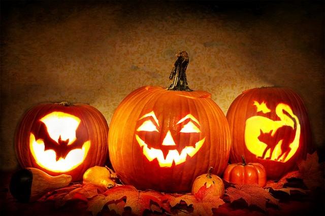 6 Halloween Ideas for Your Garden