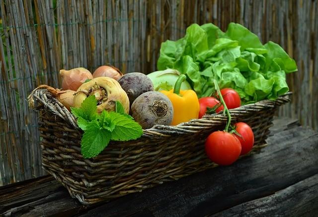 10 Best Vegetables to Start Growing in Your Garden