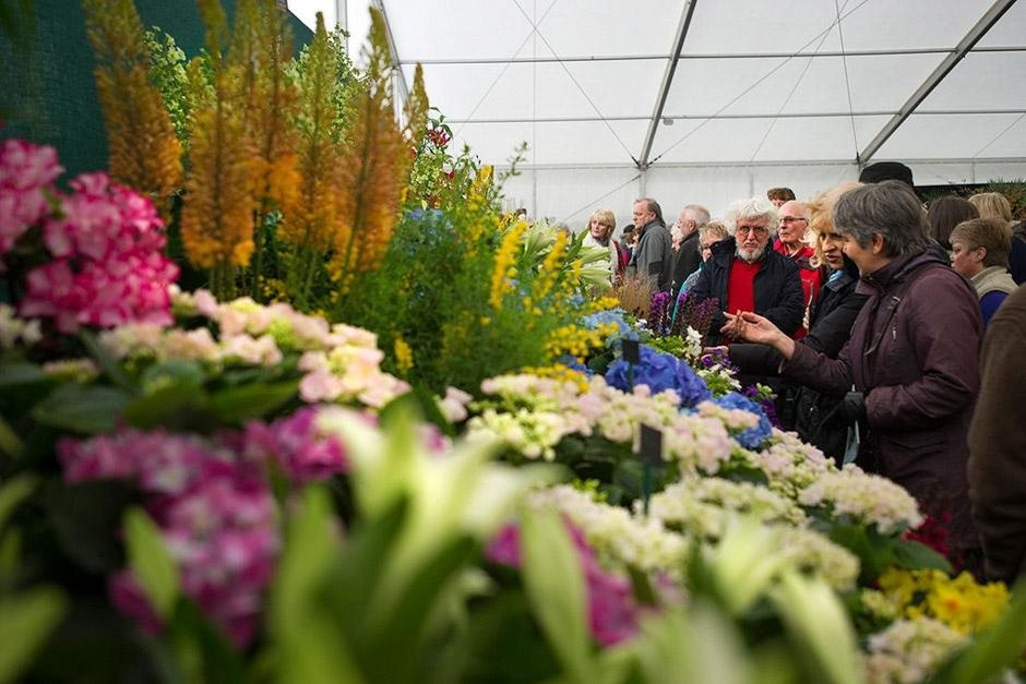 The Best Garden & Flower Shows to Visit in 2019