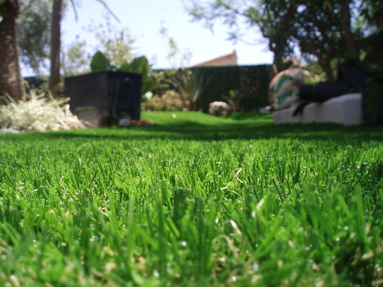 Artificial Grass & Fake Lawn Installers in Devon