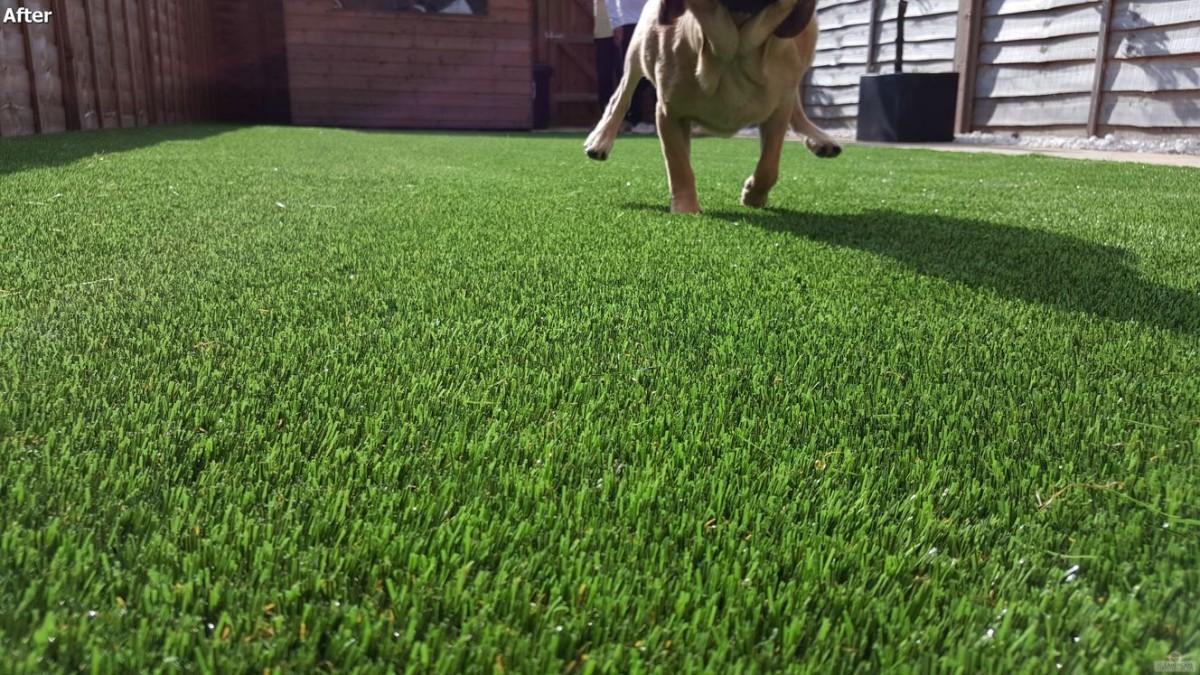 midlothian artificial grass installers