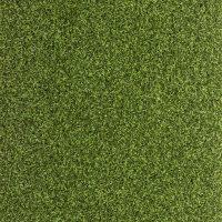 NeoPutt Artificial Golf Putting Green Grass