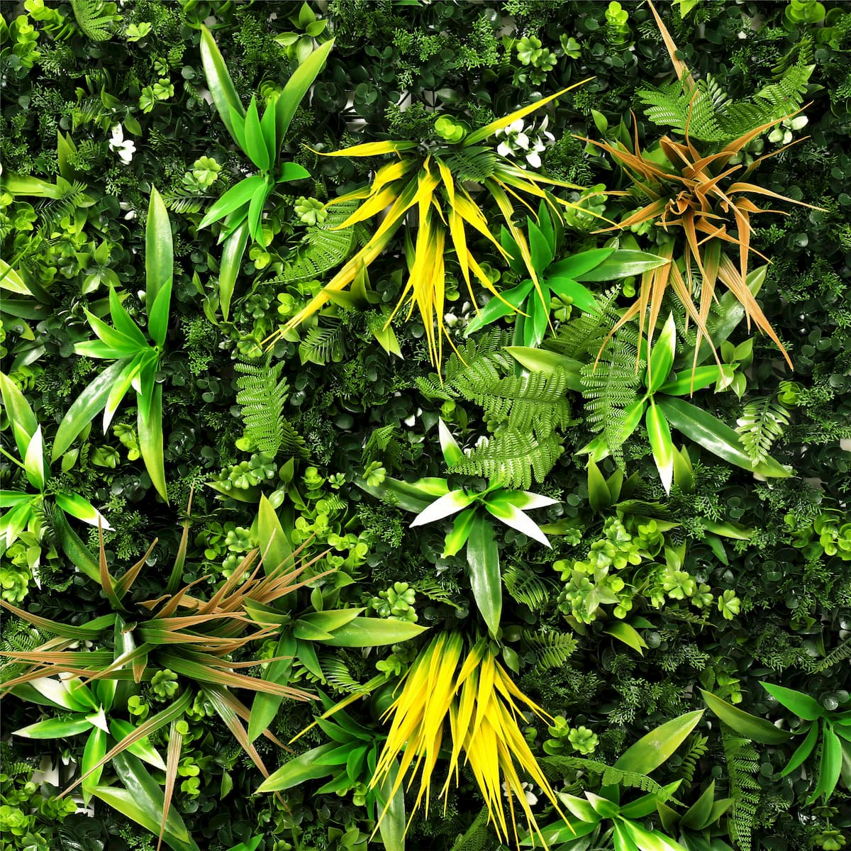 neograss yellow meadow artificial wall